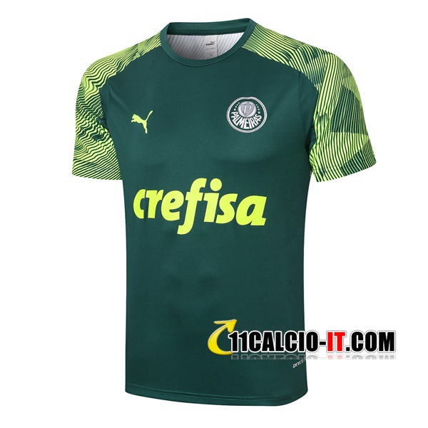 Nuove T Shirt Allenamento Palmeiras Verde 2020/21   Tailandia